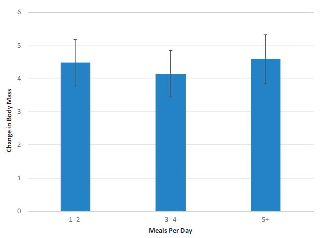 hur ofta ska man äta per dag